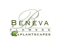 Beneva Florist